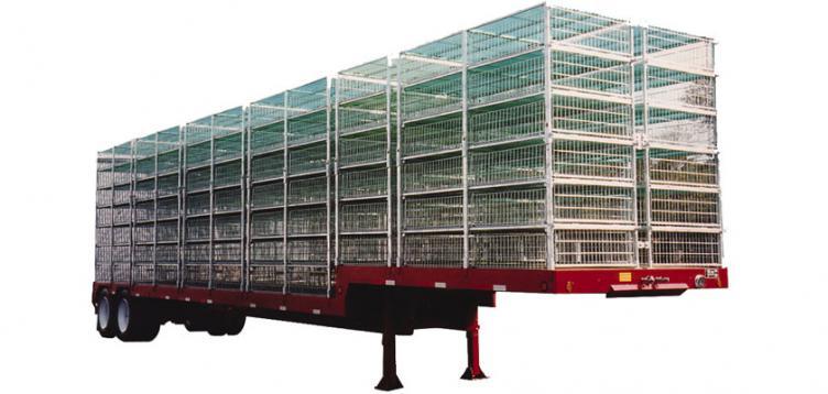 Poultry Platform Drop